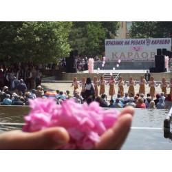 ZORNITSA COMPANY《玫瑰谷》纯天然玫瑰礼品套,直接从保加利亚玫瑰谷快递发给中国客户