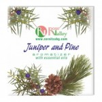 JUNIPER AND PINE AIR FRESHENER WITH ESSENTIAL OILS 25 G.