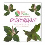 PEPPERMINT AIR FRESHENER WITH PEPPERMINT ESSENTIAL OILS 25 G.